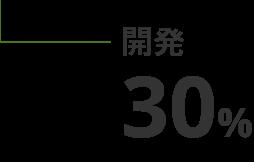 開発 30%